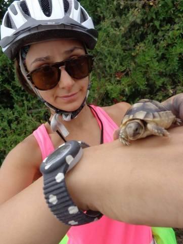 cycling_in_love-cycling_blog_rubrica_sui_viaggi-raccontaci_il_tuo_viaggio-il_viaggio_di_diego_e_cassandra_in_tandem-cicloturismo-ciclismo-foto_della_sardegna-tartaruga