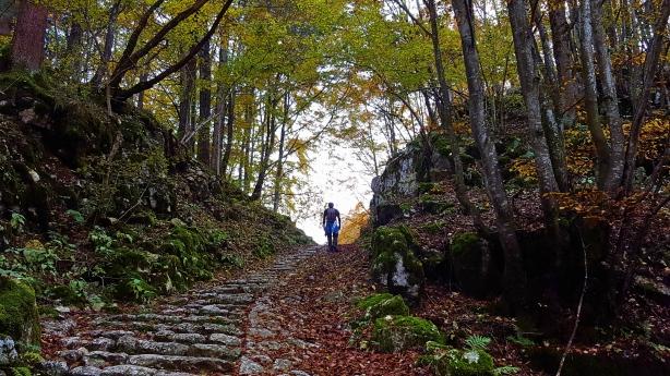 cycling_in_love-cala-del-sasso-blog-ciclismo-altopiano_di_asiago-trekking_asiago-sentieri.jpg